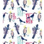 Natural History Museum- Explore The Tropics- Birds
